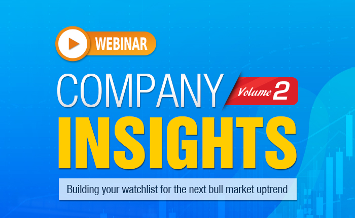 COMPANY INSIGHTS : Building your watchlist for the next bull market uptrend